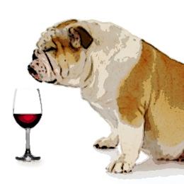 Dog nosing a claret
