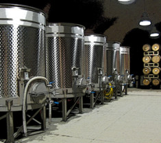 The Caves fermentors