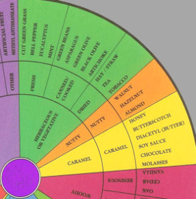 Wine aroma wheel copyright 2002 A C Noble www.winearomawheel.com