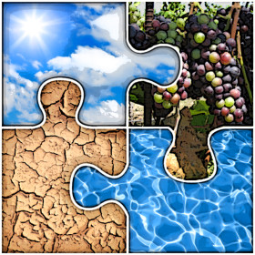 Terroir Puzzle 2 copy