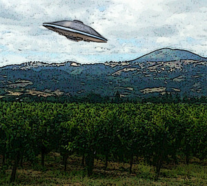 Flying Saucer Over Vineyard 2