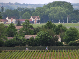 Caroline & Donald Bicycling through St Emilion
