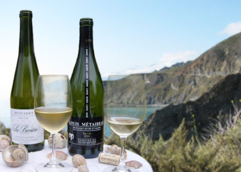 WineSnark Muscadet on the Coast copy